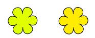 パーソナルカラー フォーシーズンズ クール&ウォーム 黄色