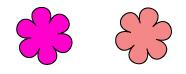 パーソナルカラー フォーシーズンズ クール&ウォーム ピンク色